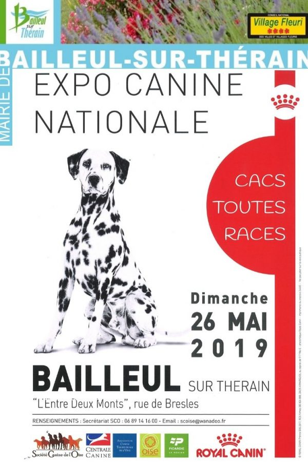 Flyer expo canine